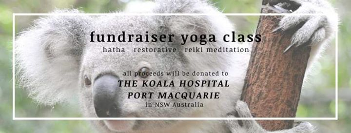 Event: Koala Support Yoga at 2020-01-26 17:00:00