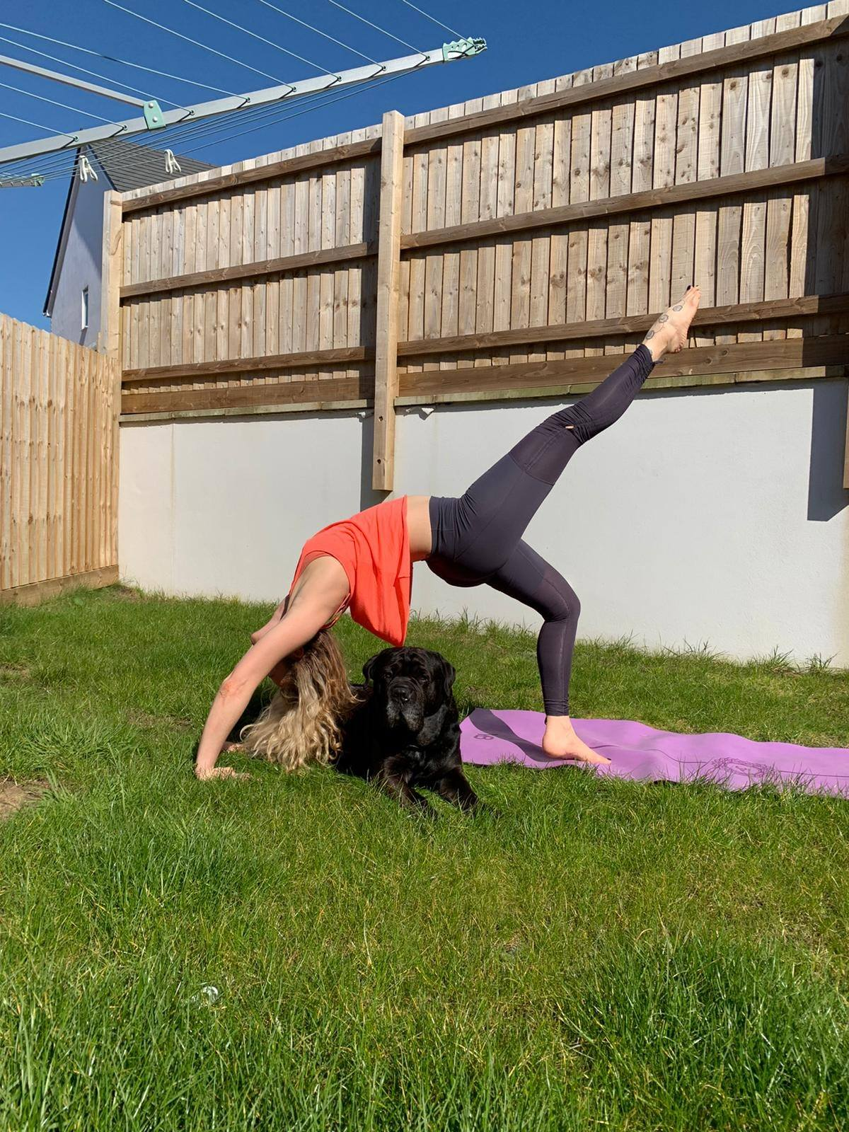 Garden Partner Yoga Stay at home  Don't